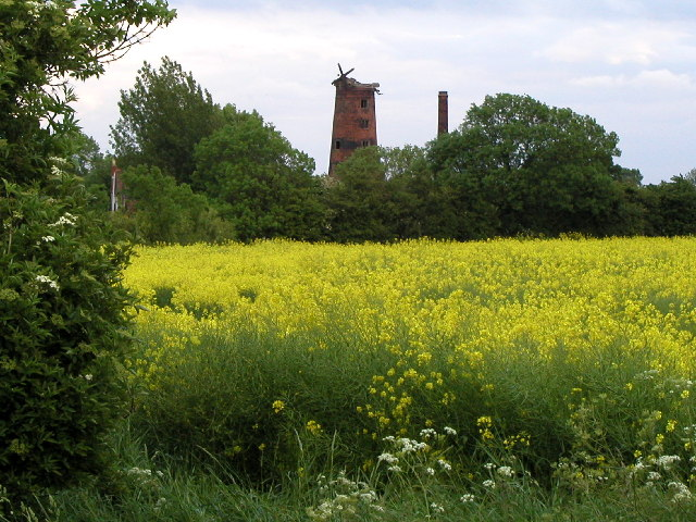 Old Windmill near Elstronwick