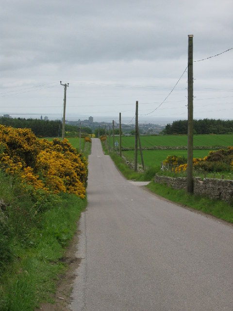 Causey Mounth Road