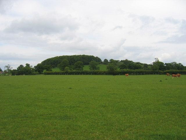 Shuckburgh Hill