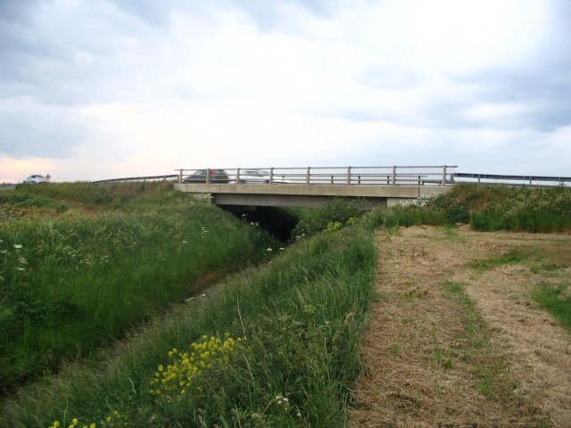 A16 Bridge across SSSI