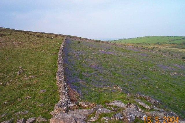 Shipley Tor - Dartmoor