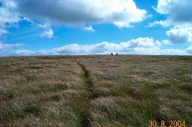 Black Hill - Dartmoor