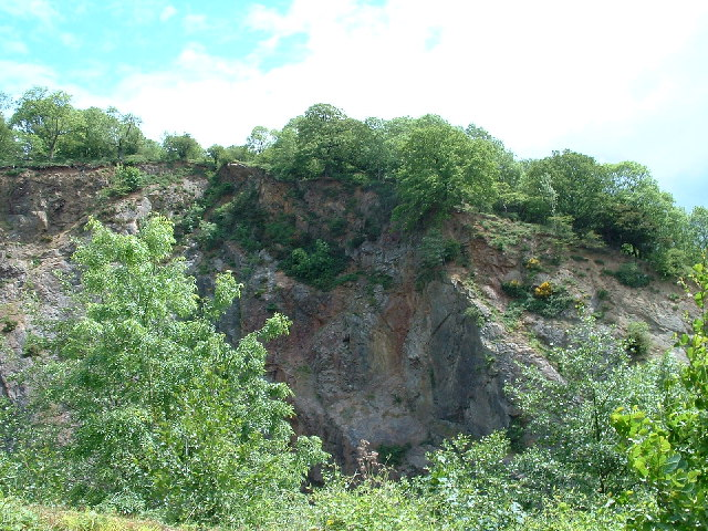 Hollybush East Quarry