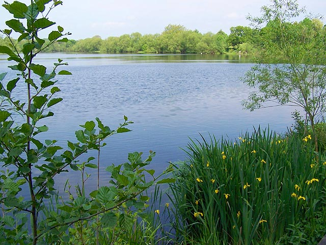 Mapperley Reservoir