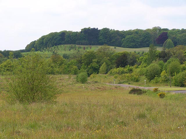 Shipley Hill