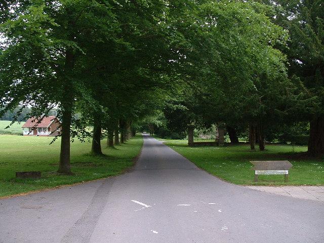 The Avenue - Shobdon