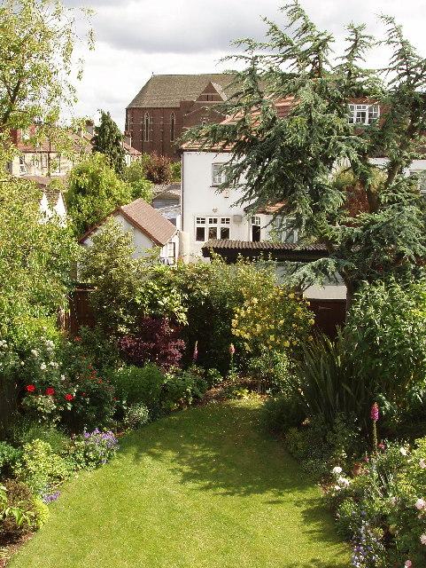 Suburban back gardens, North Acton