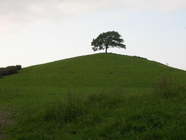 Burrow Hill, near Kingsbury Episcopi