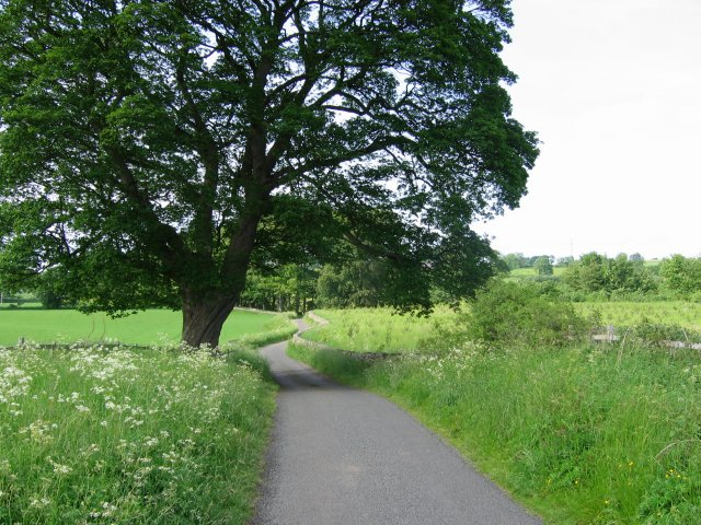 Lane near Halton