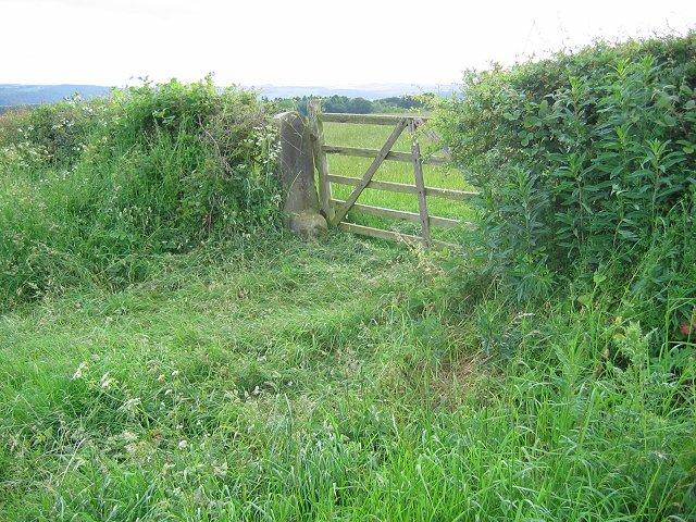Gate, Acomb Fell
