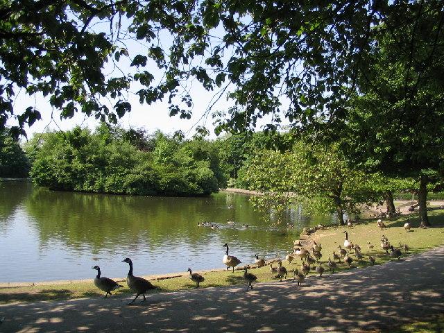 Wibsey Park Lake