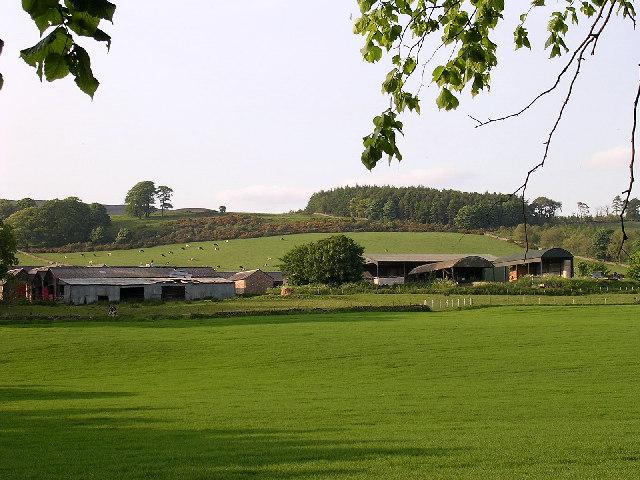 Pitpointie Farm