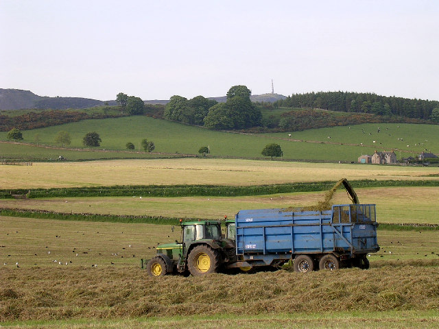 Making silage near Kirkton of Auchterhouse