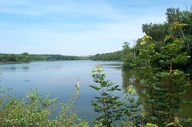 Moorgreen Reservoir