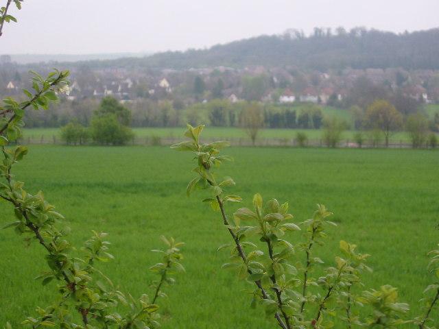 From Willan to Baldock