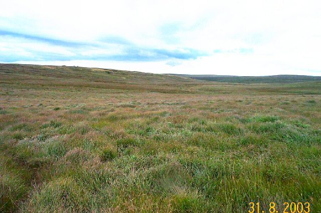 Teign Head - Dartmoor