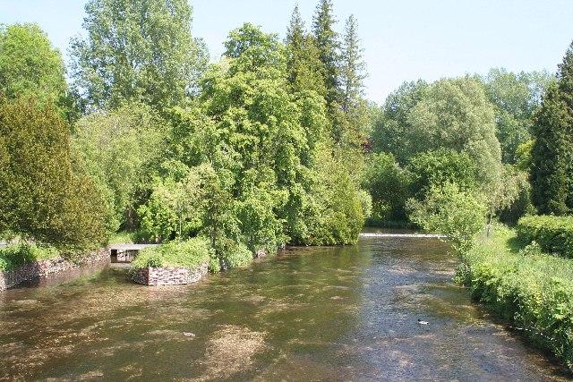 River Test at Longparish