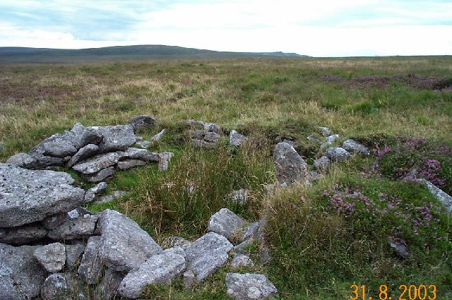 Whitehorse ridge - Dartmoor
