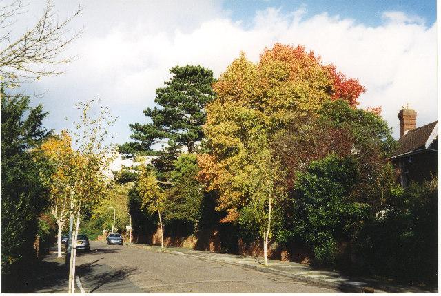 Matford Avenue, Exeter