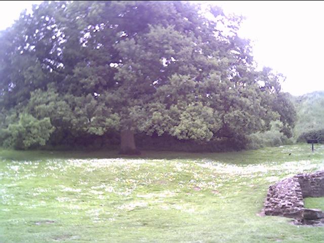 Castle Rising Castle Grounds