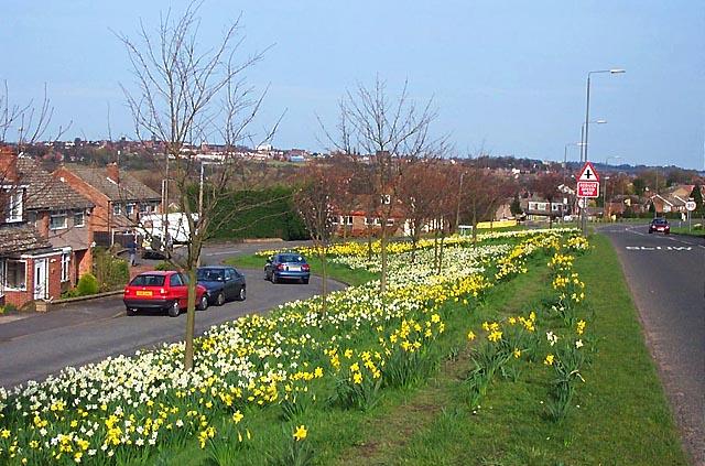 Ladywood Road, Kirk Hallam