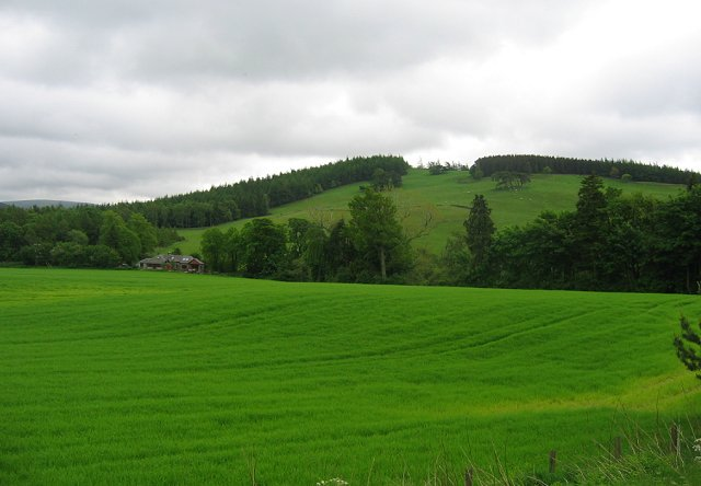 Rachan Hill