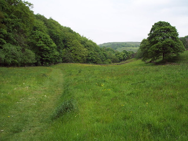 Footpath and field, Cragg Vale