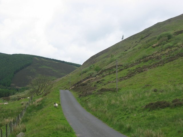 Glenholm Road