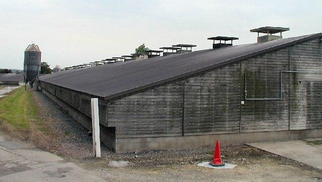 Sturdee Poultry Farm, Burton on the Wolds
