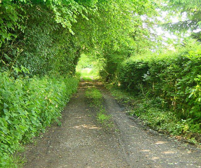 Green Lane at Timbold Hill