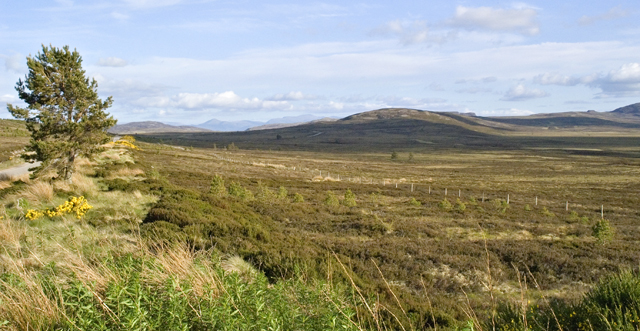 Open Moorland south of Dunearn