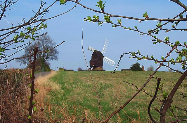 Cat and Fiddle Windmill