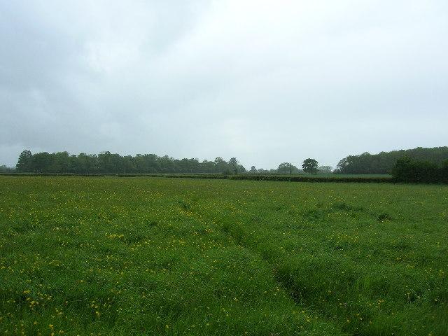 Near Drayton