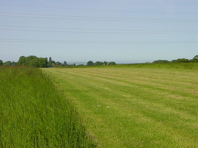 Grass Landing Strip near Frinsted