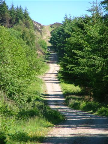 Ingleby Incline Looking Up