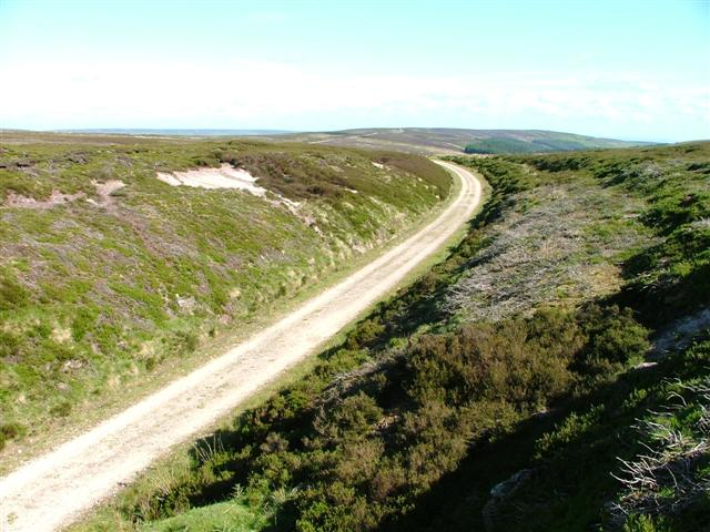 Railway Cutting, Greenhow  Moor