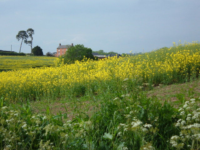 Lodge Farm, Welford, Northants