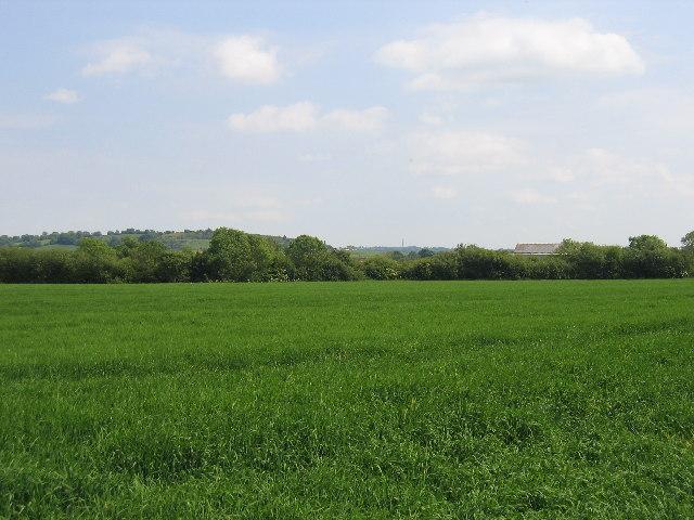 Napton Fields Lower Farm