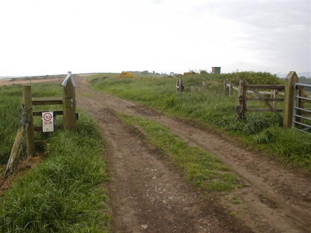 Farm Track, Eston Moor