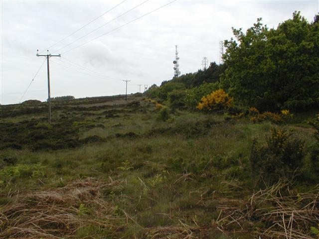 Footpath, Eston Moor