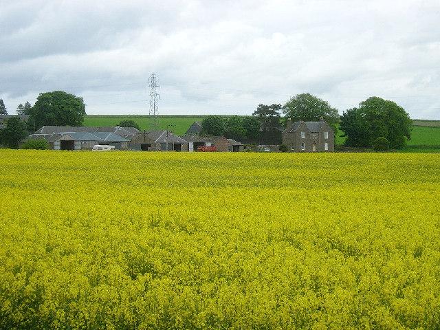West Hillhead farm