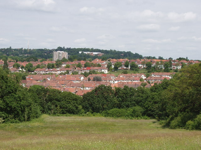 View North from Horsenden Hill, across to Sudbury Hill