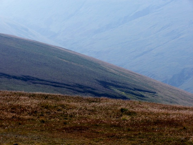 Comb Fellside