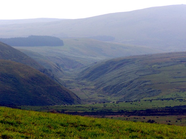 Shank Burn Valley