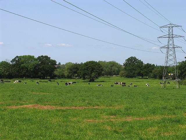 Farmland near Carters Hill