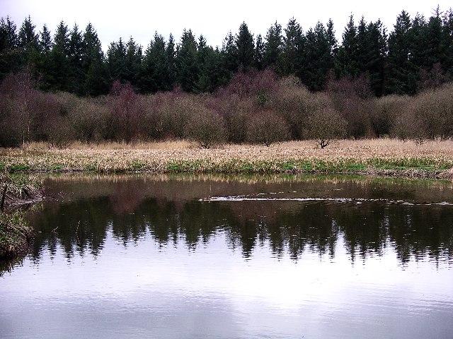 South Turnmuir Plantation & Eskrigg Nature Reserve