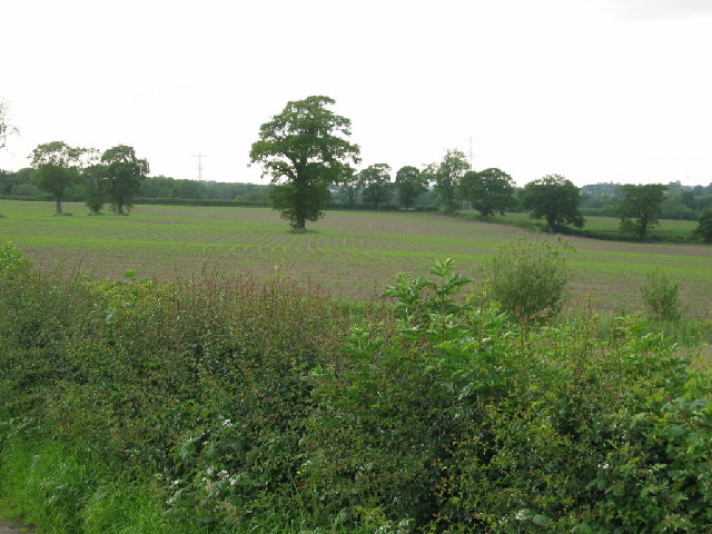View from Norley Lane