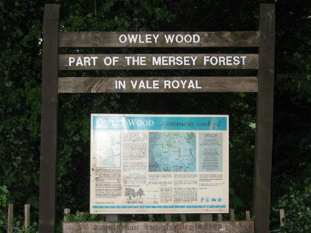 Owley Wood