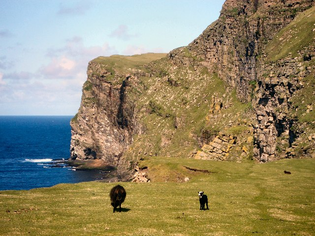 Cliffs north-west of Da Smaalie, Foula