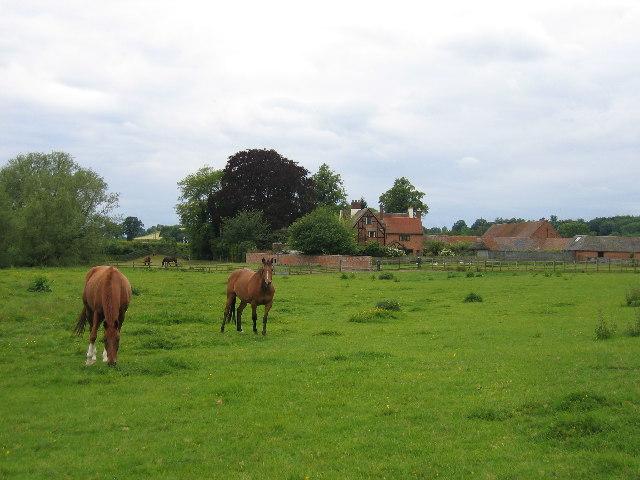 Marton - Elms Farm